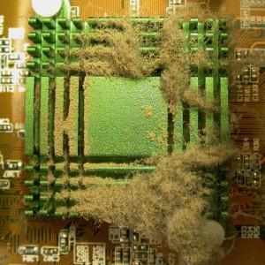 Hausstaub, der sich an einem Computerkühler angesammelt hat (Bild: Klicker / pixelio.de)